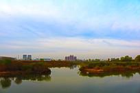 柴河风景与远处城市