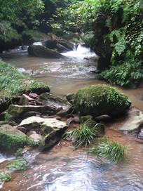 长着苔藓的石头与溪水