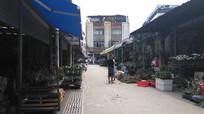 花卉市场建筑图片