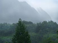泼墨画般的云雾与远山