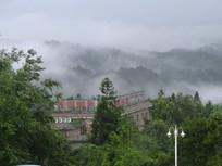 树林后云雾缭绕的远山