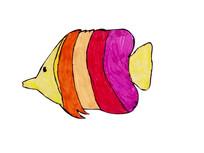 彩色比目鱼