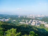 惠州市区绿色风光