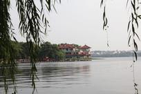 西湖垂柳与岸边风景
