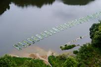 俯拍生态鱼塘