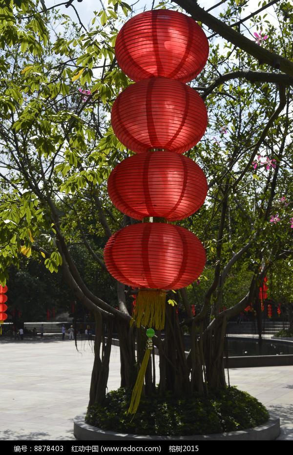 垂下来的红灯笼图片