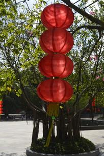 垂下来的红灯笼