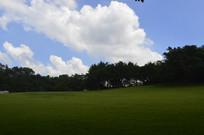雕塑园草坪