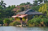 湖泊花园古屋建筑图片