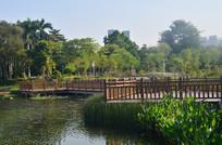 湖泊木桥风景