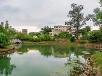 农村的池塘