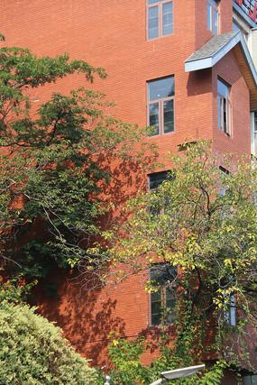 橘红色房子外的树木