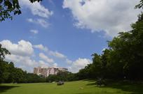 晴空大草坪树木掩映的建筑