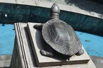 镌刻符号花纹图案的乌龟雕塑