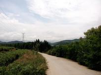 清镇红枫茶场道路