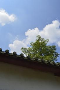 传统建筑白墙青瓦