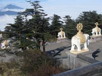 松柏树与白象雕刻