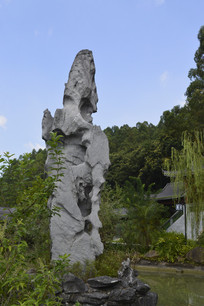 高高的假山石