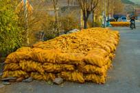 村路上的玉米堆