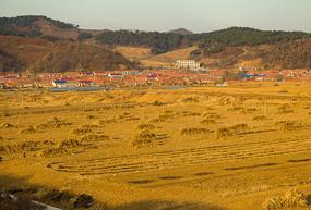 农田与群山中的乡镇