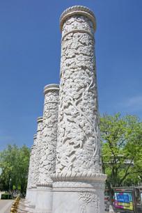 蓝天下浮雕花卉纹华表立柱