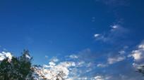 仰望深蓝天空