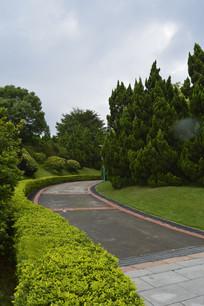云台花园道路树木绿植