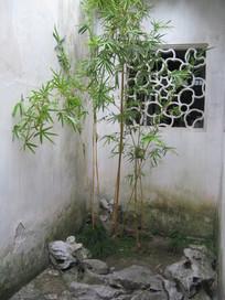 白墙下的假山与翠竹