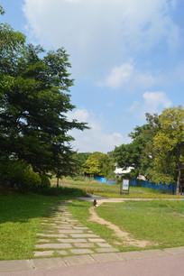 陈田花园蓝天白云绿化景观