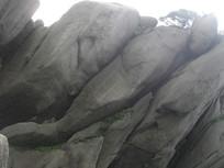 黄山大鱼石头