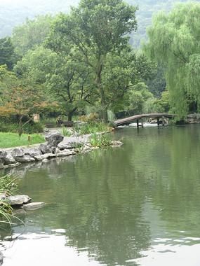 小河边的绿树与草地
