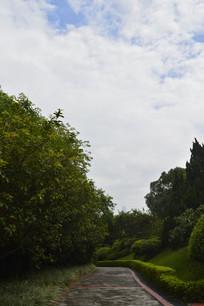 云台花园幽静道路及周围绿化