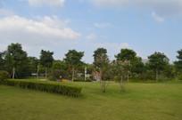 广州白云儿童公园大草坪景观