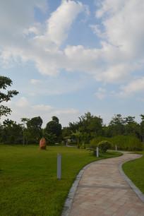 广州儿童公园道路草坪树木