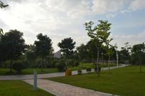 广州儿童公园绿道风景
