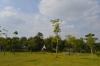 广州儿童公园绿化景色