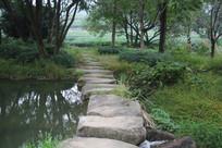 茅家埠石头路与两边林木