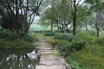 茅家埠石头桥与里面龙井田