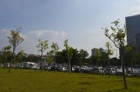 广州市儿童公园草坪广场风景
