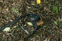 落叶里的相机