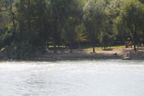 湘湖碧水与岸边树林