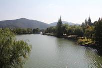 湘湖碧水与树林远眺