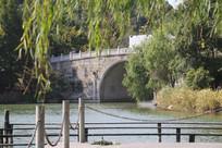 湘湖拱桥与树林