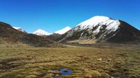 沼泽旁的雪山