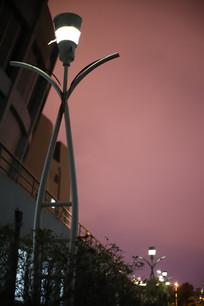 傍晚音乐厅旁的路灯
