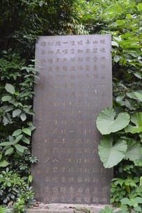 白云山公园碑林景区石刻