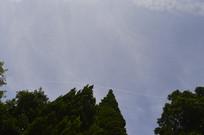 白云山公园树木蓝天白云