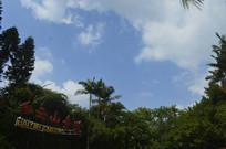 白云山索道风景