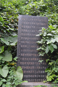广州白云山公园碑林石碑文字