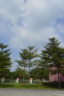 广州市儿童公园围栏树木